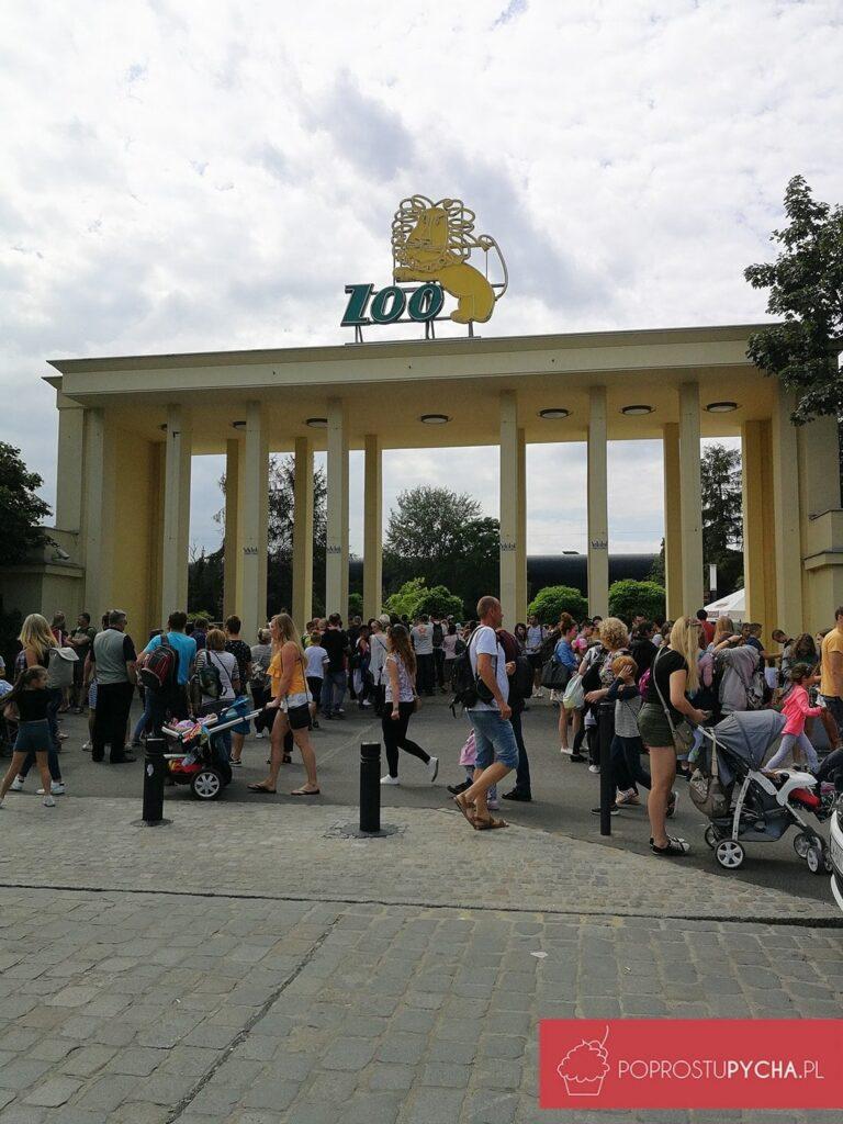Wrocław - zoo